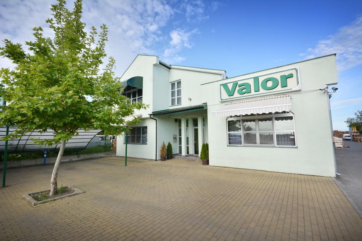 VALOR-WEB-_0018_ARHIVA-